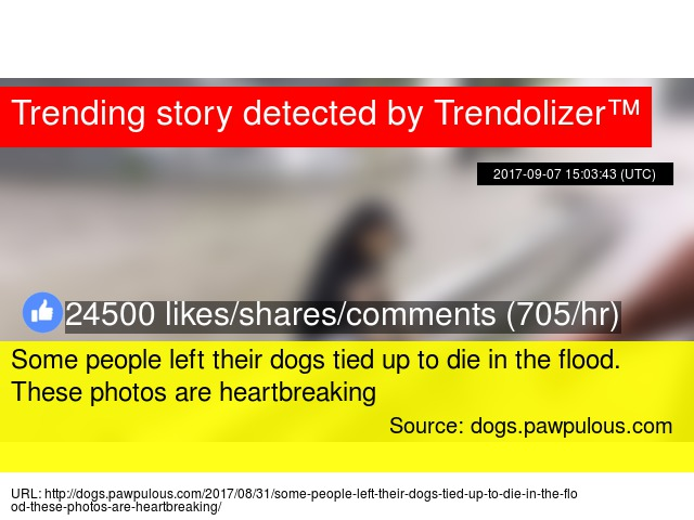 Some People Left Their Dogs Tied Up To Die In The Flood These - Some people tied their dogs up and left them to die during the flood